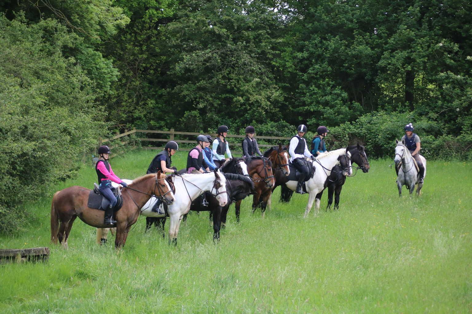 Cross Country / Hacking – Riding Farm Equestrian Centre
